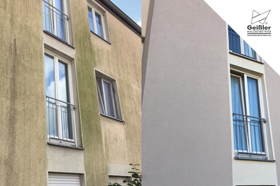 Was tun bei Algen an der Fassade?